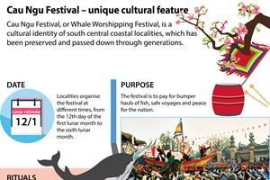 Cau Ngu Festival – unique cultural feature of coastal areas