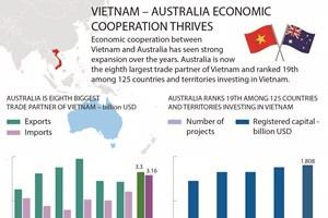 Vietnam – Australia economic cooperation thrives