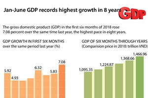 Vietnam records highest GDP growth in 8 years