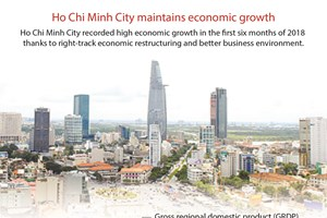 Ho Chi Minh City maintains economic growth