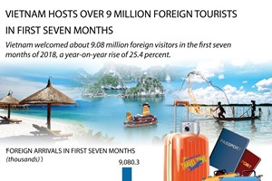 Vietnam hosts over 9 million foreign tourists in first seven months