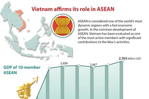 Vietnam affirms its role in ASEAN