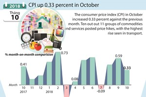 CPI up 0.33 percent in October