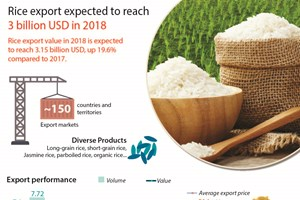 Rice export expected to reach 3 billion USD