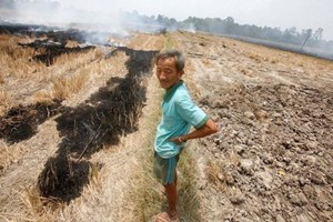 US continues to help Vietnam's drought-hit provinces