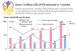 Some 13 billion USD of FDI attracted in 7 months