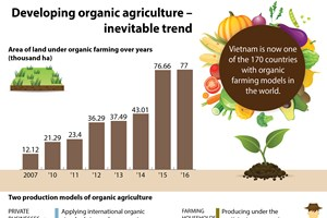 Developing organic agriculture - inevitable trend