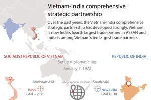 Vietnam-India comprehensive strategic partnership