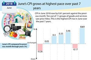 June's CPI grows at highest pace over past 7 years
