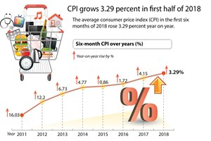CPI grows 3.29 percent in first half of 2018