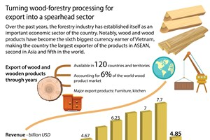 Turning wood-forestry processing for export into a spearhead sector