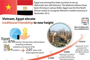 Vietnam, Egypt elevate traditional friendship to new height
