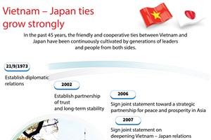 Vietnam - Japan ties grow strongly