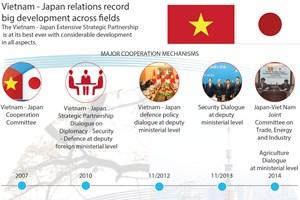 Vietnam - Japan relations record big development across fields