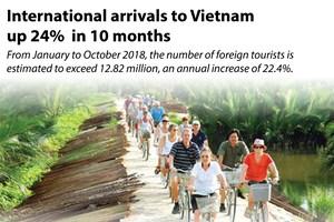 International arrivals to Vietnam up 24% in 10 months