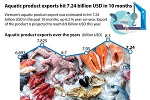 Aquatic product exports hit 7.24 billion USD in 10 months