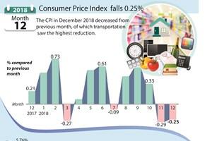 Consumer Price Index  falls 0.25% in December