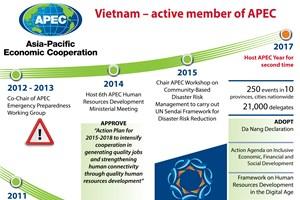 Vietnam – active member of APEC
