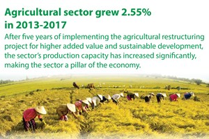 Agricultural sector grew 2.55% in 2013-2017