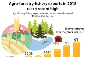 Agro-forestry-fishery exports in 2018 reach record high