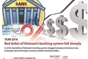 Vietnamese banks' bad debts fall sharply in 2018