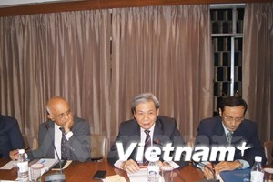 Vietnam respects countries' rights in East Sea: diplomat