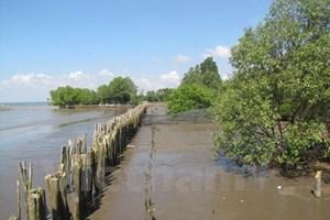 Ben Tre prioritises climate change adaptation