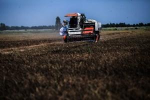 Mekong Delta prepares for tougher drought