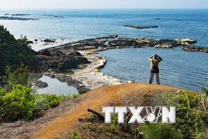 Ly Son Island needs proper planning for tourism development