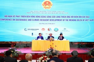 Int'l partners vow support for climate-resilient projects in Mekong De