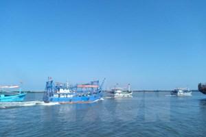 Fisheries – important economic sector of Vietnam