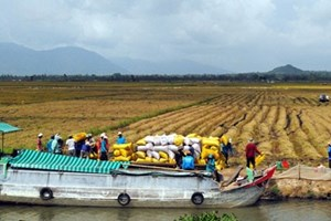 Mekong provinces link up on water management