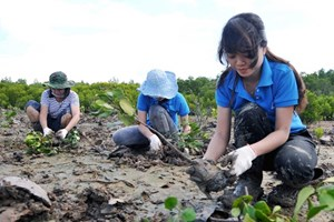 Vietnam wants to promote social forestry in ASEAN: official