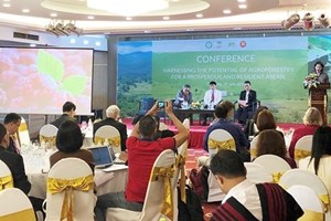 Workshop seeks to optimise agri-silviculture