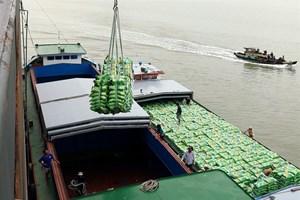 Rising sea levels threaten Vietnam's top rice producer