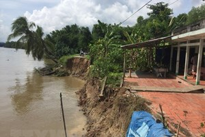 Mekong Delta needs ecosystem-based solutions to climate change