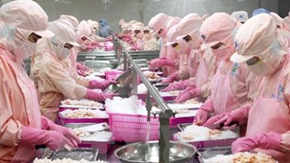 Vietnam, Slovenia look for closer trade links