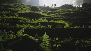 Son Doong Cave voted as new wonders of the world