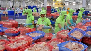Vietnam, Lithuania boast abundant cooperation potentials