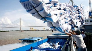 Vietnam sees rice export opportunity in Egypt