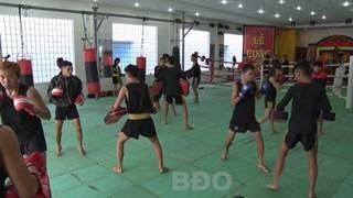 Second Vietnam int'l traditional martial arts festival kicks off in Bi