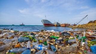 "Phu Tho province responds to ""no plastic waste"" campaign"