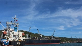 Chinese port group wants to open container line to Vung Ang port