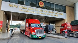 Import-export value through Lao Cai's border gates declines due to COVID-19