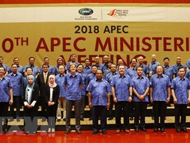 Deputy PM Pham Binh Minh busy at APEC meeting