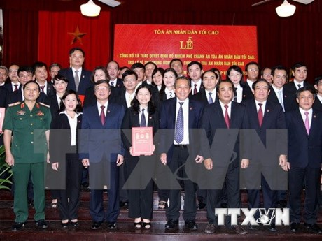 High-level People's Court debuts in HCM City