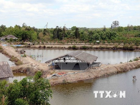 Ca Mau: 6,000 households face water shortage