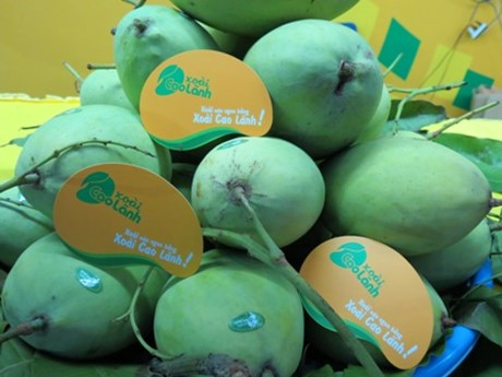 Dong Thap promotes fruit exports