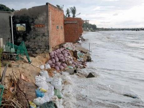 Binh Thuan province struggles to tackle coastal erosions
