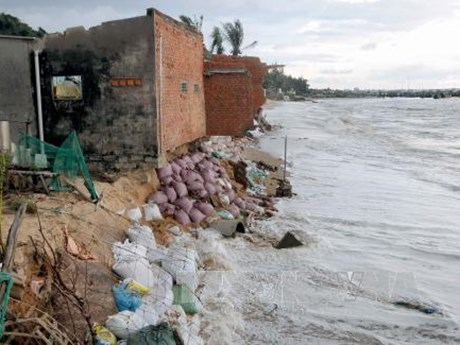 Binh Thuan moves to prevent seawater intrusion